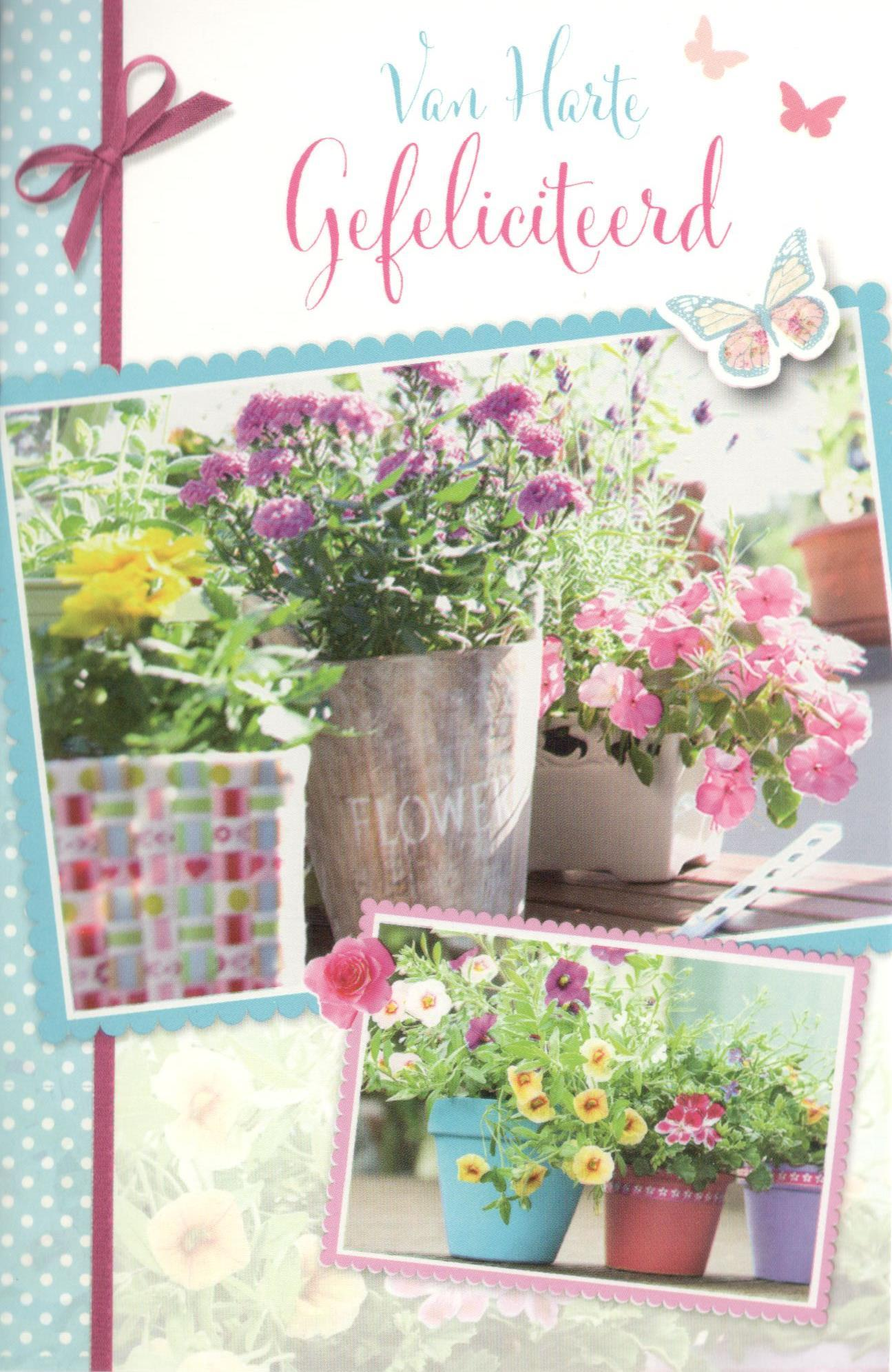 gefeliciteerd met bloemen Gefeliciteerd kaartje met bloemen voor vrouwen bestellen gefeliciteerd met bloemen
