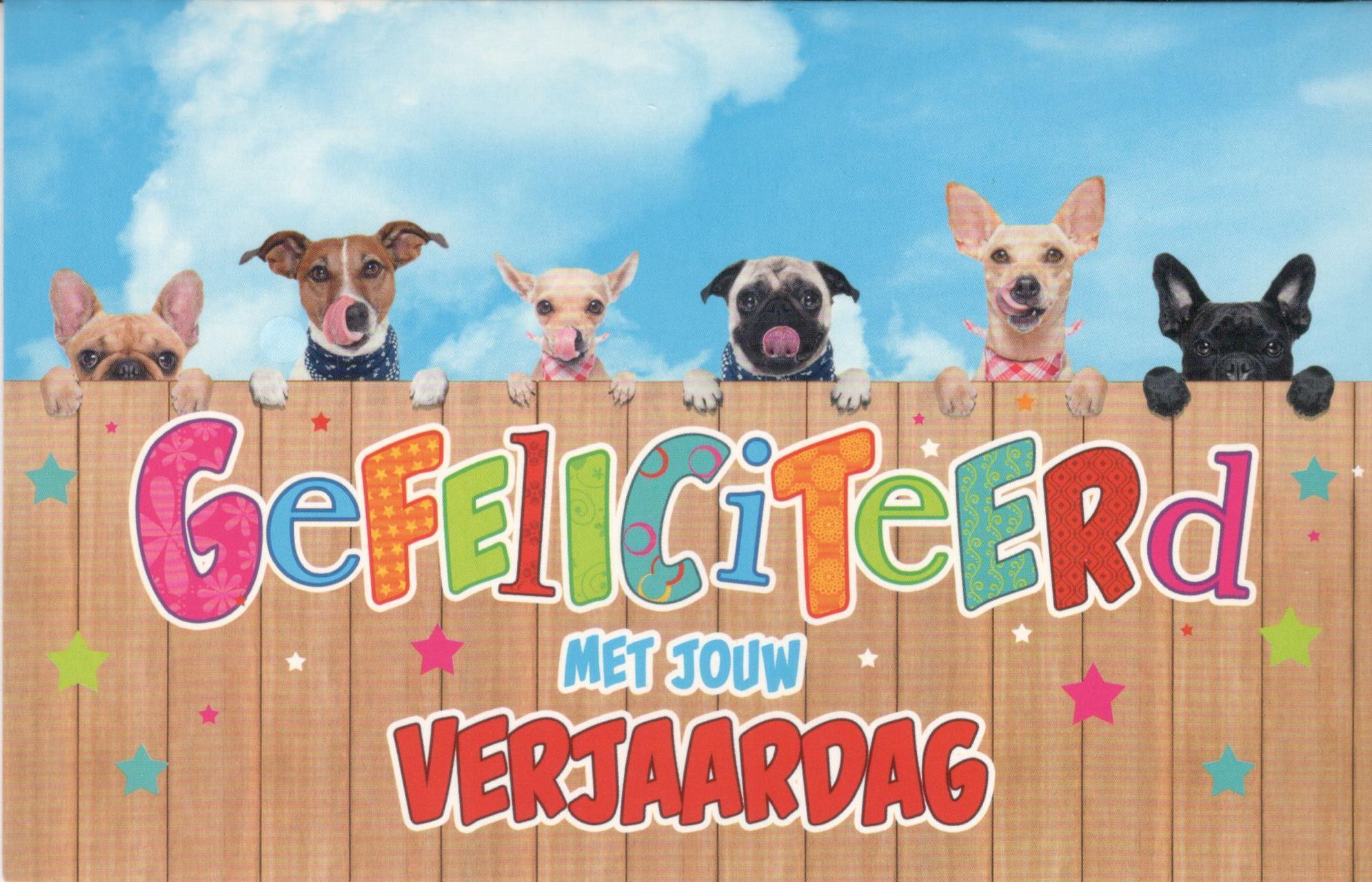Populair Super grappige verjaardagskaartje met dieren #RE-21